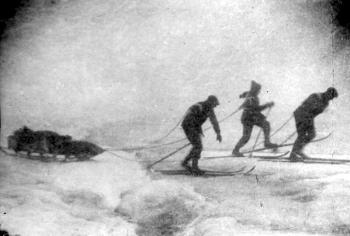 On 31 July, Olaf Holtedahl set out on a ski expedition from the Mashigin Fjord across the island along with his geologist cousin Reidar Holtedahl and the young medical student and assistant Reidar Tveten. This picture shows the three men on their way up over the Norwegian glacier from Mashigin Fjord.