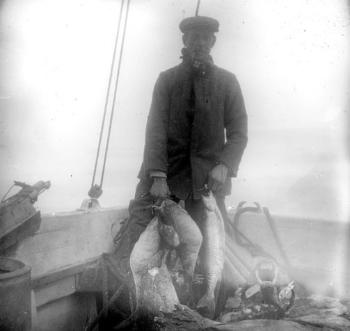 On their way south again along the coast of Novaya Zemlya, the expedition again stopped at the Samoyed colony in the Pomorskaya Bay and stocked up with new supplies. This picture appears to show fish they had caught themselves.